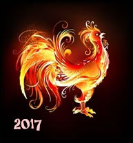 rooster-1b