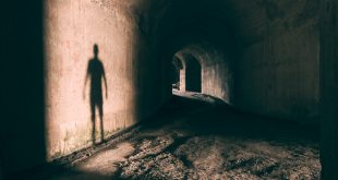 Are you seeing shadow spirits?